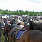 Horse Fair at Spancilhill