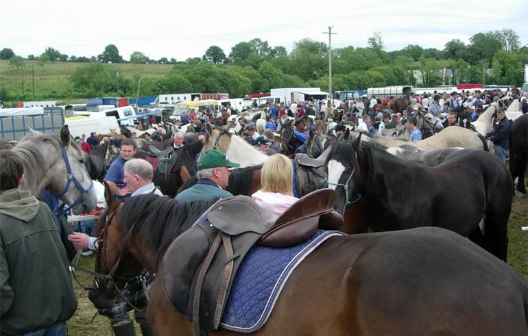 Spancilhill Horse Fair
